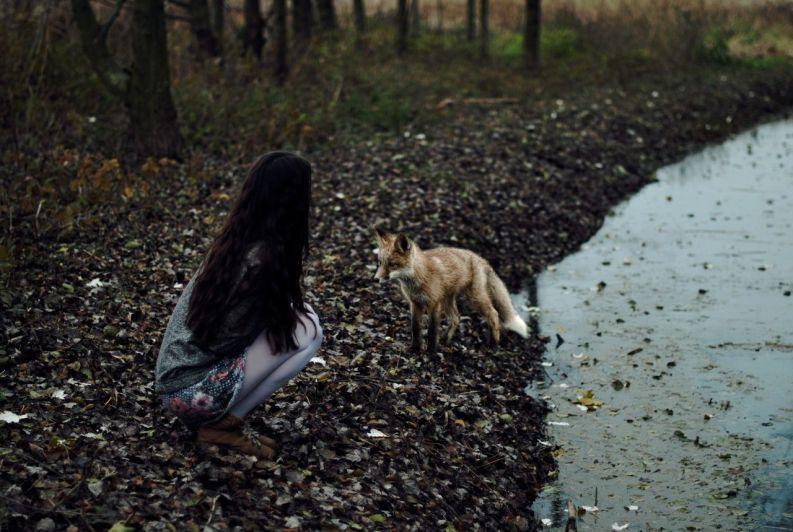 Original Photo by Patrycja Kucharzyk