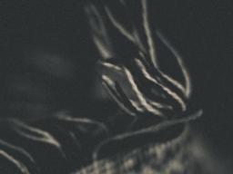 Fäden.